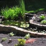 Steingarten im Garten
